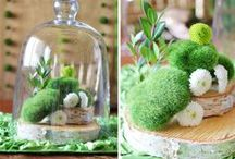 Garden Wedding / As seen in my latest HWTM Trend Alert, This is a styled shoot by Soiree Event Design for Koyal Wholesale featuring ideas for a Garden themed wedding or bridal shower using the new Terrarium centerpiece trend.  A virtual shopping list of all of the items I used in styling this theme and some additional inspiration.