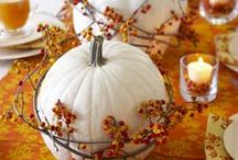 Fall & Thanksgiving Ideas