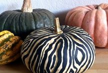 Fall Outdoor Decorating / by Kaylee Bug Design