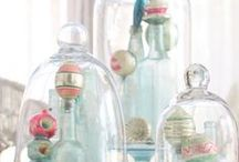 Bell Jars and bottles