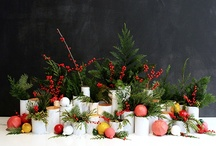 Christmas / Christmas Decorating Ideas / by Caitlin @ Desert Domicile
