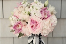 Attractive Blooms & Bouquets / by Hazel Anne