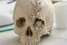 I ♡ SKULLS / skulls are so beautiful. They can be dark.. or reflect life  <3 / by Chelsea Barham Speer