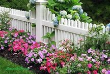 IN THE GARDEN / Ideas and inspiration for our gardens and grounds