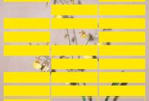 Delightful Design / by Kimberly Beck