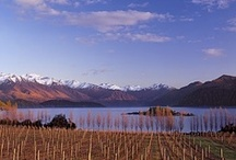 Otago Wines / Pictures of the wines and vineyards of Central Otago