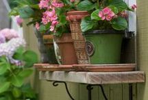 Garden bliss & Patio pleasures / by Hollyday Simpson-Collins