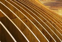 Linear / by Stephanie Somsuntan-Whitman