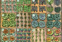 gardening / by Sarah Kargol