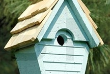 Birdhouses for Dave to build / by Vicki Newendorp