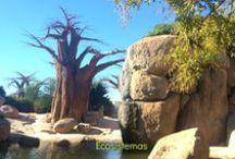 Me Voy... / Muchos de los destinos por los que hemos pasado y de los que hemos hablado en el blog.. http://todomundopeques.blogspot.com