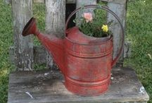 "WATERING CANS..another vintage love / """"I BELIEVE IN POLITE AND RESPECTFUL PINNING"""""""" / by Jean Mcreynolds"