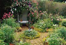 For the Yard / Back yard inspiration / by Christina Ferguson