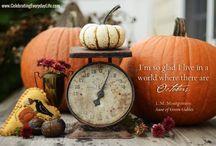 Autumn / by Nancy Cahn
