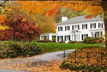 Curb Appeal / Curb appeal tips, backyards, rooftops and front porches. / by HomeFinder.com