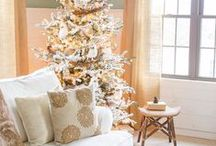 Wintertime Decorating / How do you decorate for winter after all the Holiday decorations are put away? Here are a few ideas for cold weather decor that's not Christmas-y.