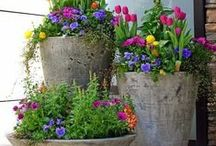 spring. / Spring decorations, ideas, recipes and inspiration. Also for Easter ideas.