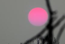 color: pink! pink! pink!