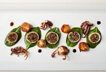 Amazing appetizers / by Suzi K