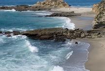 Beach, Coast & Shells / by Nancy Allen