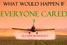 GMO Junk