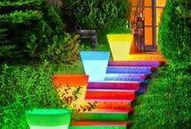 Colors / by Nancy Allen
