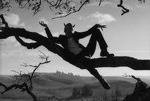 Tom Waits / by Debby Vivari