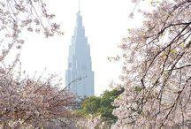 City | Tokyo / Project Globetrotter: Japan
