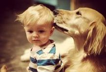 I loooove dogs