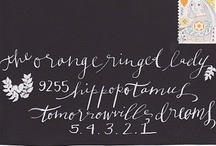 calligraphy / calligraphy & lettering styles for envelope addressing and wedding details  / by Bella Notte DC