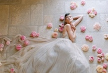 Wedding/Matrimonio