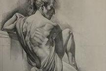 Anatomy Drawings