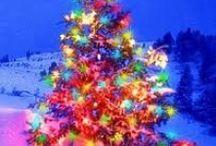 Christmas / by Jane Tindall