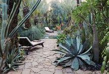 outdoor design / Landscape architecture ideas