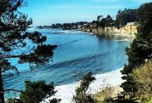 Santa Cruz / Beautiful Santa Cruz! Mountains, rivers, redwoods, beaches... this Paradise I call home