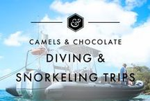 Diving + Snorkeling Trips / A roundup of my favorite dive destinations as well as undersea trips I hope to take at some point in the future. All the best dive and snorkel destinations from around the world including Diving Itineraries, Diving Inspiration, and Diving tips