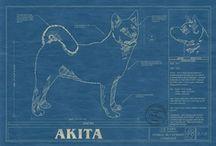 Akitas / by Vickie Wilmeth