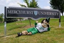 Laker Pride& Spirit / by Mercyhurst University
