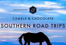 Southern Road Trips / The best cities, hotels and road trips in the American South including the best Southern Itineraries, Southern Accommodations and Southern Travel Tips