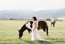 Montana Wedding Vendors / Wedding Vendors serving Montana and the Rocky Mountains. Photography / Caterers / Florists / Party Rentals and Tents / Bridal Fashion / Beauty / Venues / Invitations
