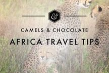 Africa Travel Tips / Africa is an under-visited continent with an incredible amount to offer a traveler. This board is for all the best of Africa Travel including Africa Itineraries, Africa Travel Inspiration, Africa Accommodation, and Africa Travel Tips