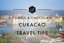 Curaçao Travel Tips / Curaçao, an amazing little island with excellent food, bountiful booze, beautiful beaches, a thriving nightlife, lots of wildlife and a great underwater landscape - Curaçao does not disappoint. Discover everything about Curaçao travel on this board including Curaçao Travel Planning, Curaçao Travel Inspiration, Curaçao Travel Itineraries and Curaçao Travel Tips