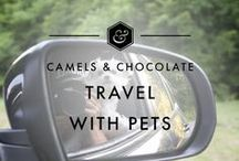 Travel with Pets / Everything you need for Travel with Pets including Pet Travel Inspiration, Pet Travel Tips, Pet Travel Itineraries, and ideas for traveling with your pets.