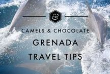 Grenada Travel Tips / Grenada: The underrated and stunningly beautiful spice island of the Caribbean, and one of my favourites. This board is all about Grenada Travel including Grenada Travel Tips, Grenada Travel Itineraries and Grenada Travel Inspiration to help you plan your trip to Grenada