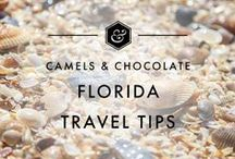 Florida Travel Tips / Florida is a State that I have spent A LOT of time in over the years, it being so close to my home state of Tennessee. Florida is a lot more diverse than people would imagine and on every visit there I am still surprised and delighted with my experience traveling in the Sunshine State. This board is for everything  Florida travel including Florida Itineraries, Florida Travel Inspiration, Florida Accommodations, Where to eat in Florida and Florida Travel Tips.