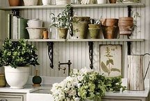 HOME: Garden & Lawn
