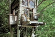 Tree houses and tents / Living close to nature