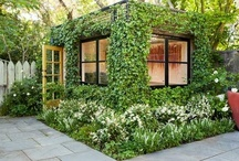 Green places / City gardens and living with plants