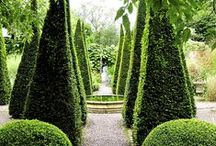 GARDEN DESIGN / From perfectly manicured and a graphic labyrinth (maze) design, to French & English gardens - be inspired to add statement curb appeal design to your home's exterior, for the neighborhood, as well as yourself...  / by Lynda | Focal Point Styling