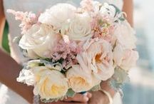 Wedding Bouquet / by Heather Brown